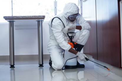 Emergency Pest Control, Pest Control in Lower Edmonton, N9. Call Now 020 8166 9746