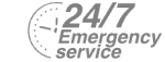 24/7 Emergency Service Pest Control in Lower Edmonton, N9. Call Now! 020 8166 9746